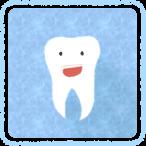 歯について